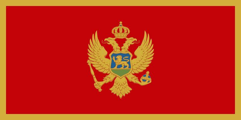 ¿Que opinión de Montenegro tienes?