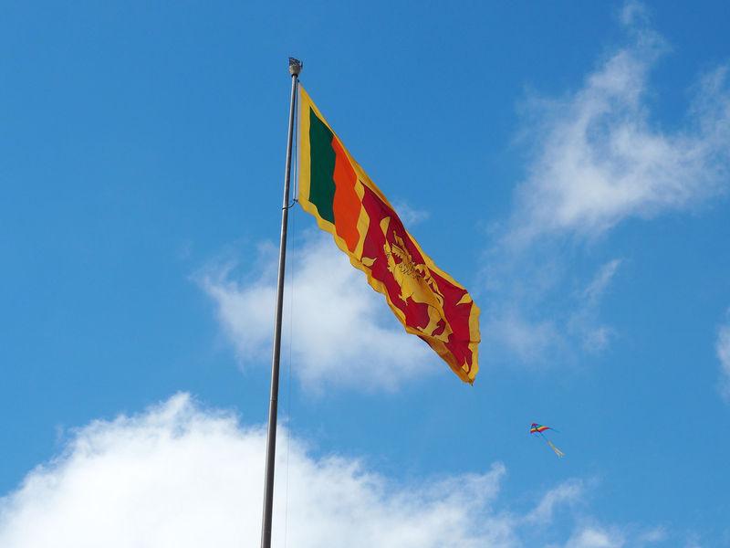 ¿Qué animal sujeta una espada en la bandera de Sri Lanka?