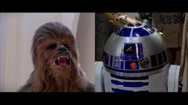Los fieles acompañantes: ¿droide o wookie?