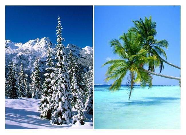 ¿Clima Frío o Caluroso?