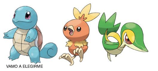 ¿Snivy,Squirtle o Torchic?