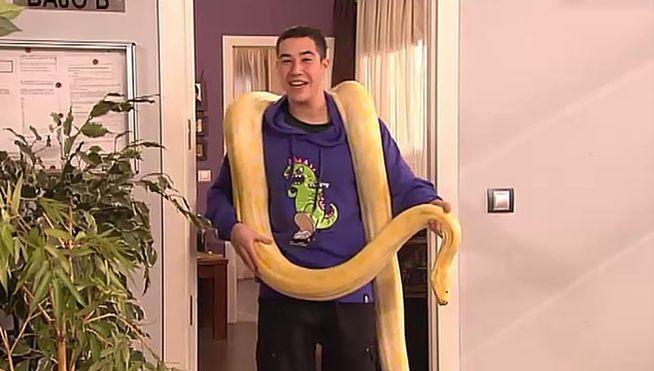 En el capitulo 5x6. ¿Como se llama la serpiente de Francisco Pastor?